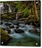 Brandy Creek Falls Acrylic Print