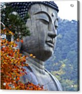 Buddha In Autumn Acrylic Print