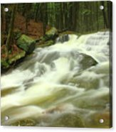 Buffam Brook Cascades Acrylic Print