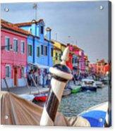 Burano Venice Italy Acrylic Print