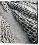 Buried Fishing Net Acrylic Print