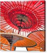 Burmese Parasols Acrylic Print