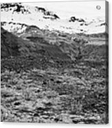bushes and mosses growing on Skaftafell glacier end moraine Vatnajokull national park in Iceland Acrylic Print