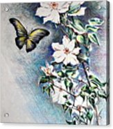 Butterfly and Clematis Vine Acrylic Print