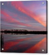 Butterfly Cloud Formaiotn No.4 Acrylic Print