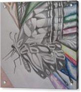 Butterfly Light Acrylic Print