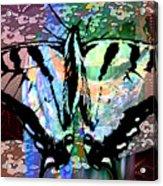 Butterfly Pet Acrylic Print