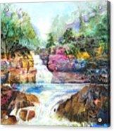 Buttermilk Falls IIi Acrylic Print by Patricia Allingham Carlson