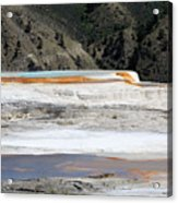 Canary Spring At Mammoth Hot Springs Upper Terraces Acrylic Print