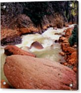 Canyon Creek Ouray Colorado Acrylic Print