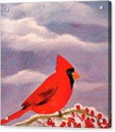 Cardinal Christmas Acrylic Print