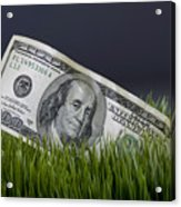 Cash In The Grass. Acrylic Print
