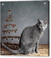 Cat Christmas Acrylic Print