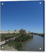 Cattle Of Saint Louis In Aigues Morte Acrylic Print