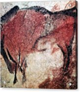Cave Art Acrylic Print