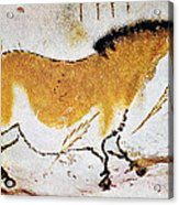Cave Art: Lascaux Acrylic Print