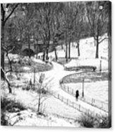 Central Park 6 Acrylic Print by Wayne Gill