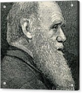 Charles Darwin, English Naturalist Acrylic Print