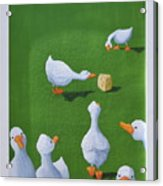 Cheese And Quackers Acrylic Print