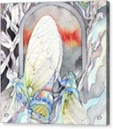 Cicada Couple Acrylic Print