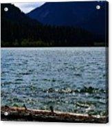 Clear Lake Washington Acrylic Print