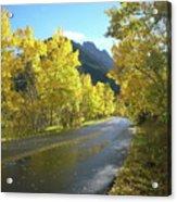 Colorado Byway Acrylic Print