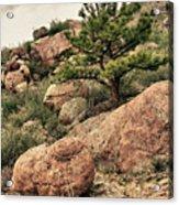 Colorado Rocky Mountains Acrylic Print