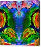 Colorful Life Acrylic Print