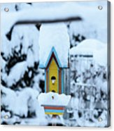 Colors In The Snow Acrylic Print