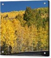 Colors Of Colorado #2 Acrylic Print