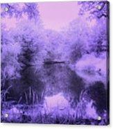 Conishead Lake Acrylic Print