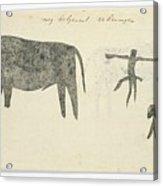 Copies After San Rock-paintings Of An Ox, A Baboon, And A Man, Robert Jacob Gordon, 1777 Acrylic Print