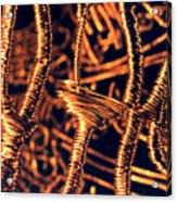 Copper Wirework Acrylic Print