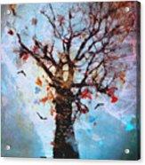 #words Like Confetti Acrylic Print