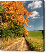 Country Road And Autumn Landscape Acrylic Print