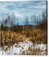 Country Winter 3 Acrylic Print