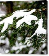 Country Winter 10 Acrylic Print