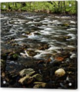 Creek, Smoky Mountains, Tennessee Acrylic Print