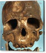 Cro-magnon Skull Acrylic Print