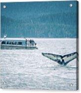 Cruise Ship Pier 91 In Seattle Washington Acrylic Print
