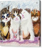 Cuddle Kitties Acrylic Print