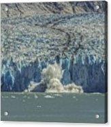 Dawes Glacier Calving #1 Acrylic Print