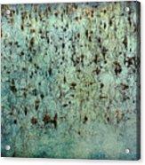 Dead Lotuses Acrylic Print