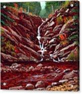 Deepwoods Cascade Acrylic Print