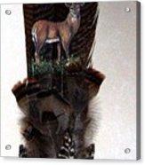 Deer Feather Acrylic Print