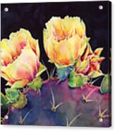 Desert Bloom 2 Acrylic Print