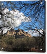 Desertscape Acrylic Print