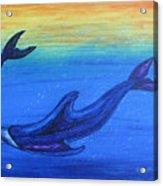 Dolphins At Play Acrylic Print