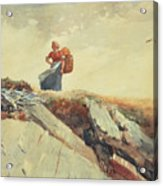 Down The Cliff Acrylic Print by Winslow Homer