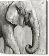 Elephant Watercolor Acrylic Print